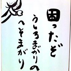 safa_selected_01-02